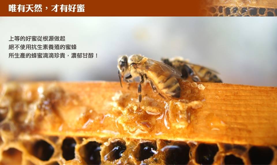 荷包社區龍眼蜜/百花蜜-台灣最美農村故事館