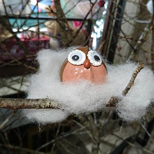 銀葉板根種子鳥-DIY專區-台灣最美農村故事館